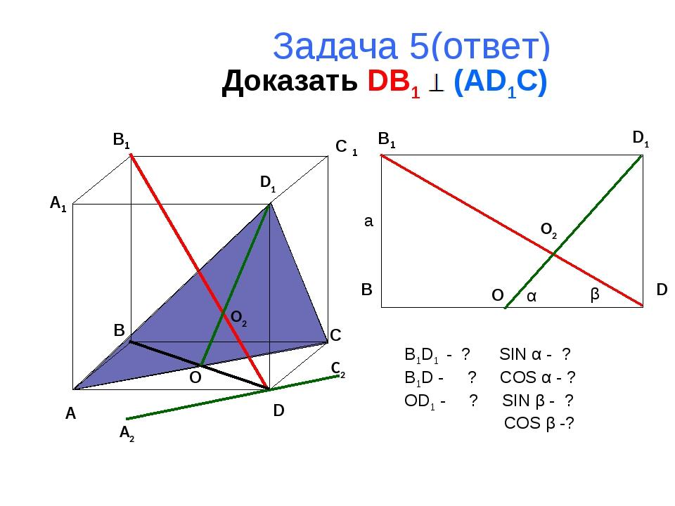 Задача 5(ответ) Доказать DB1 (AD1C) A B C D A1 B1 C 1 D1 B1 B D D1 O2 O A2 C2...