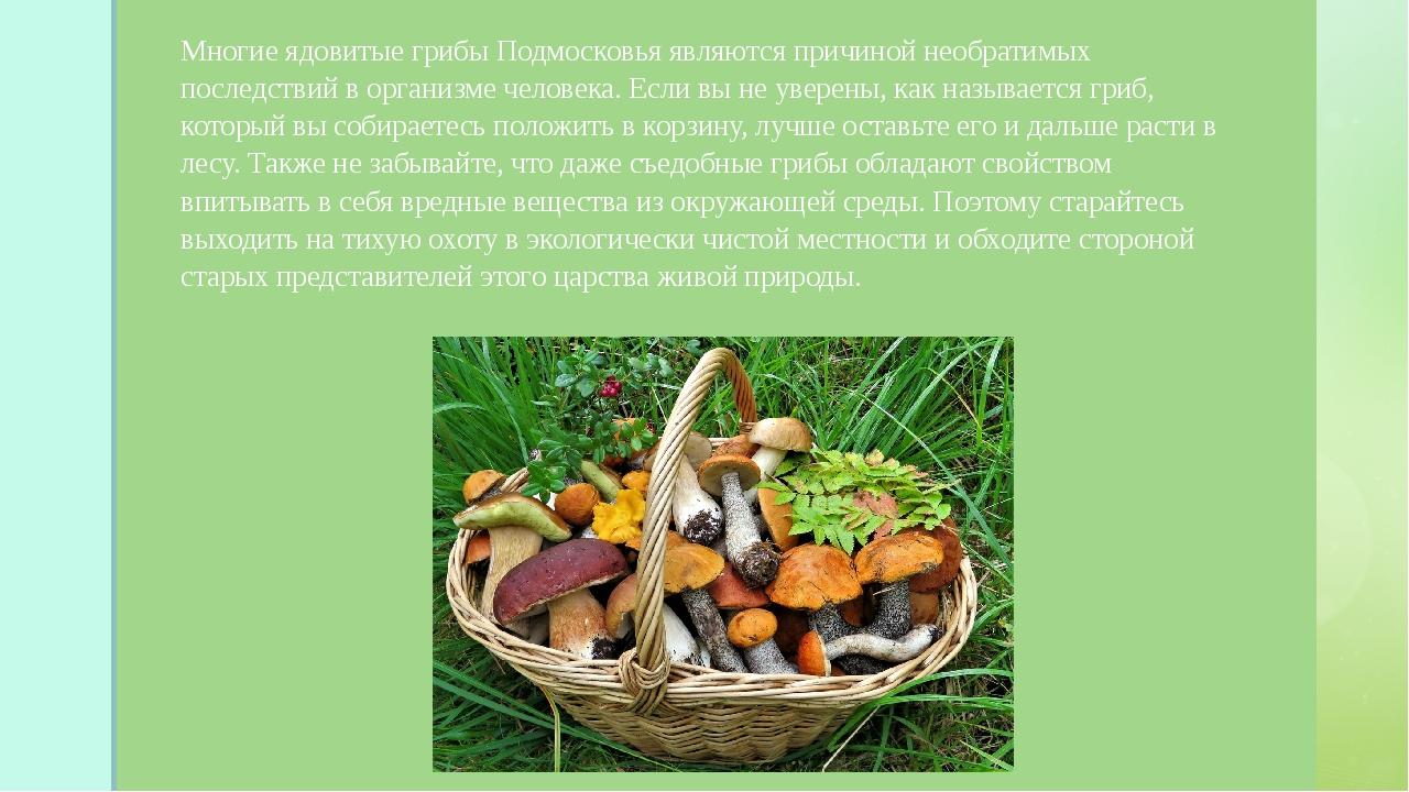 Многие ядовитые грибы Подмосковья являются причиной необратимых последствий...