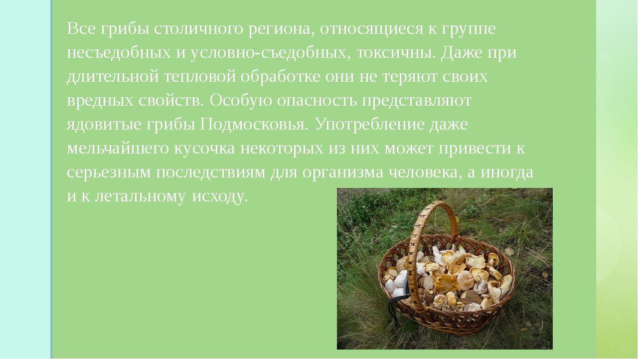 Все грибы столичного региона, относящиеся к группе несъедобных и условно-съе...