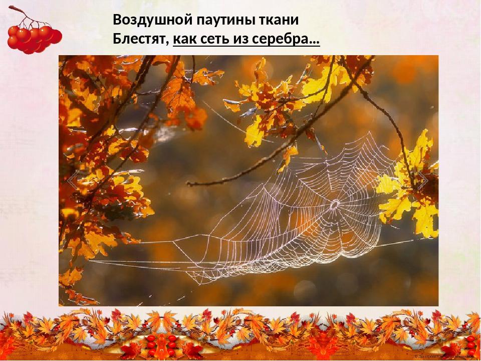 Воздушной паутины ткани Блестят, как сеть из серебра…