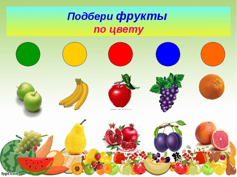недавнего картинки на обобщающие понятия овощи хрупких невысоких леди