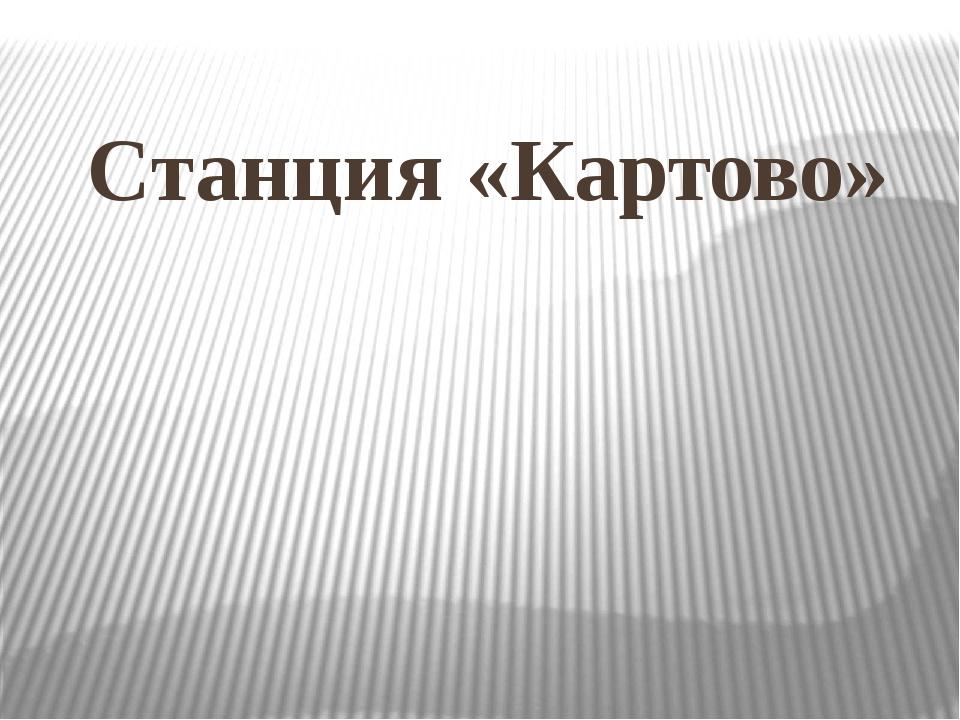 Станция «Картово»