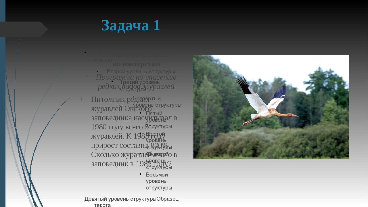 Задача 1 Экологическое волонтерство Программа по спасению редких видов журавл...
