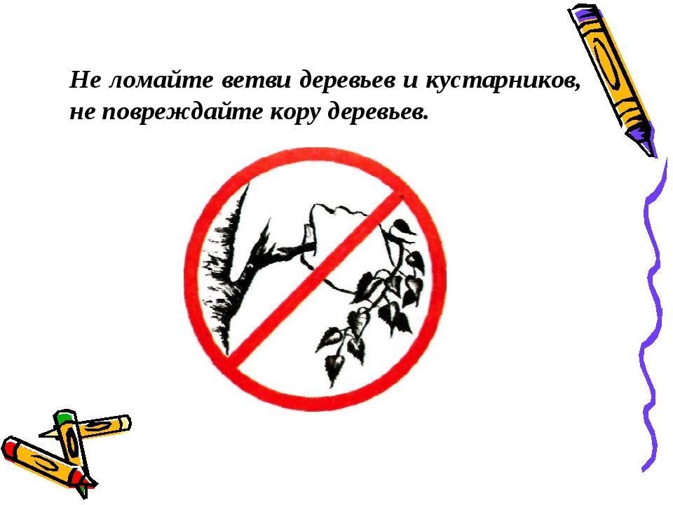 Знак не ломайте деревья