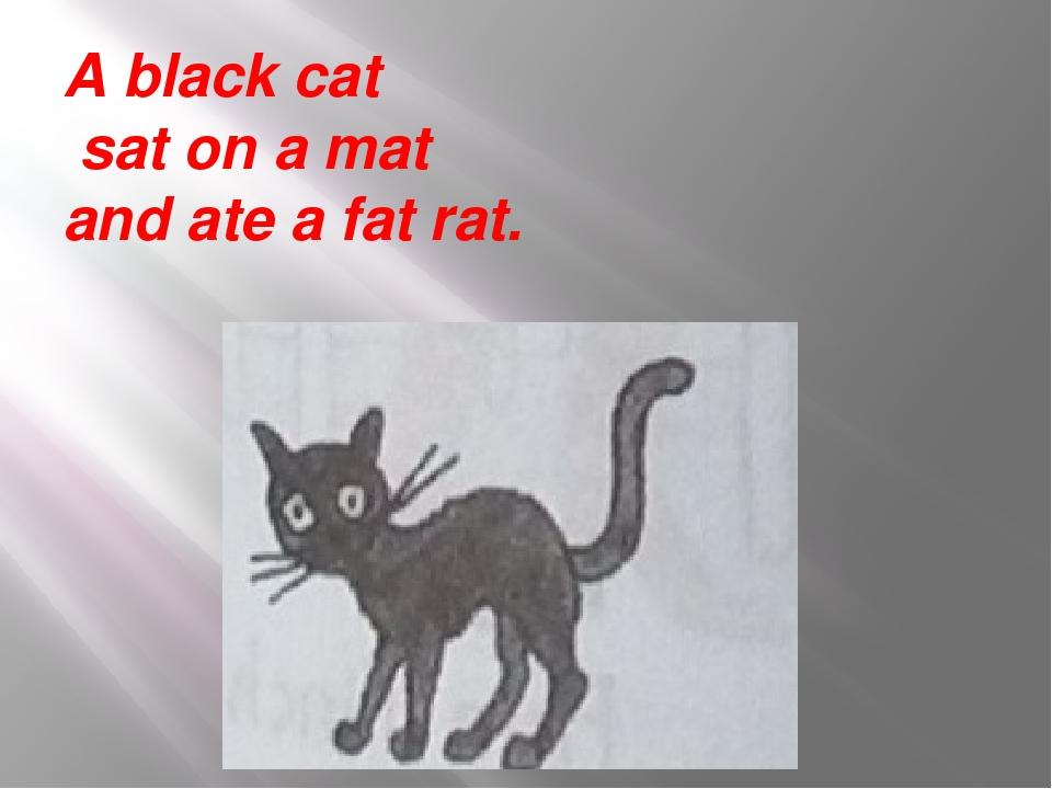 A black cat sat on a mat and ate a fat rat.