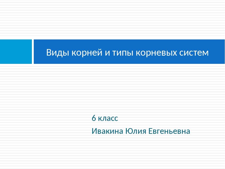 6 класс Ивакина Юлия Евгеньевна Виды корней и типы корневых систем