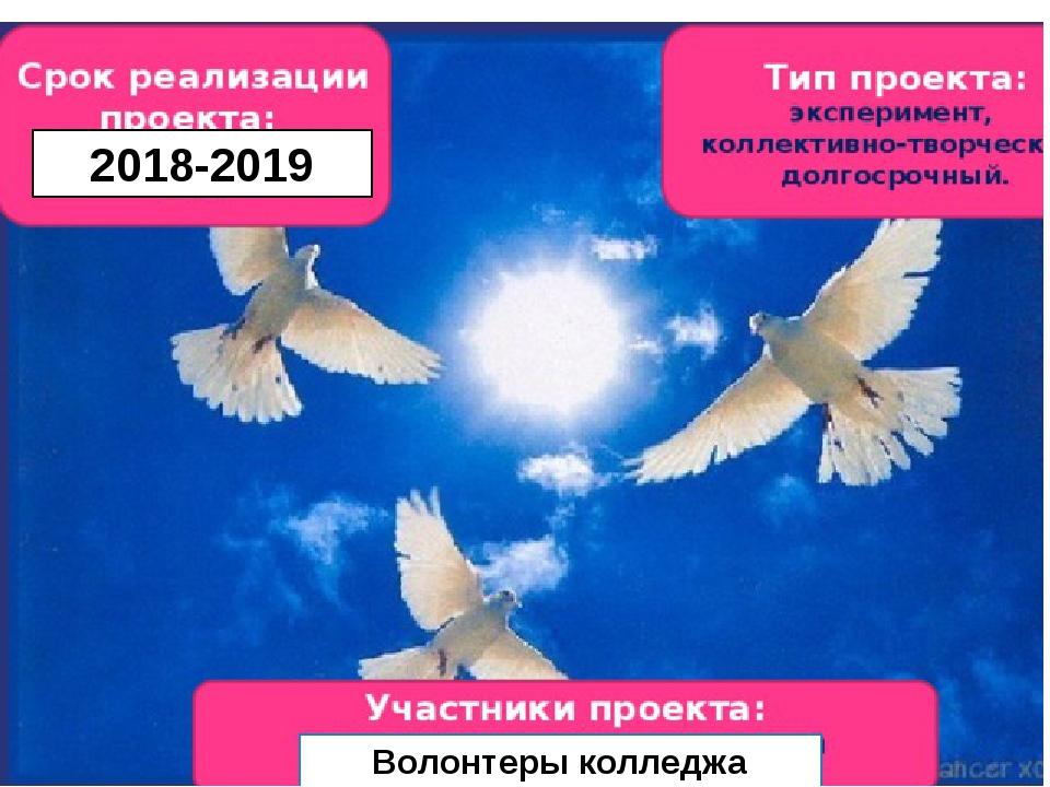 2018-2019 Волонтеры колледжа