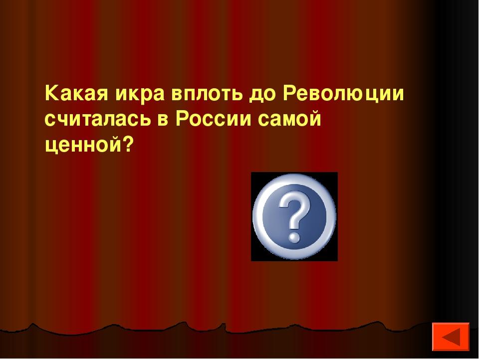 щучья Какая икра вплоть до Революции считалась в России самой ценной?
