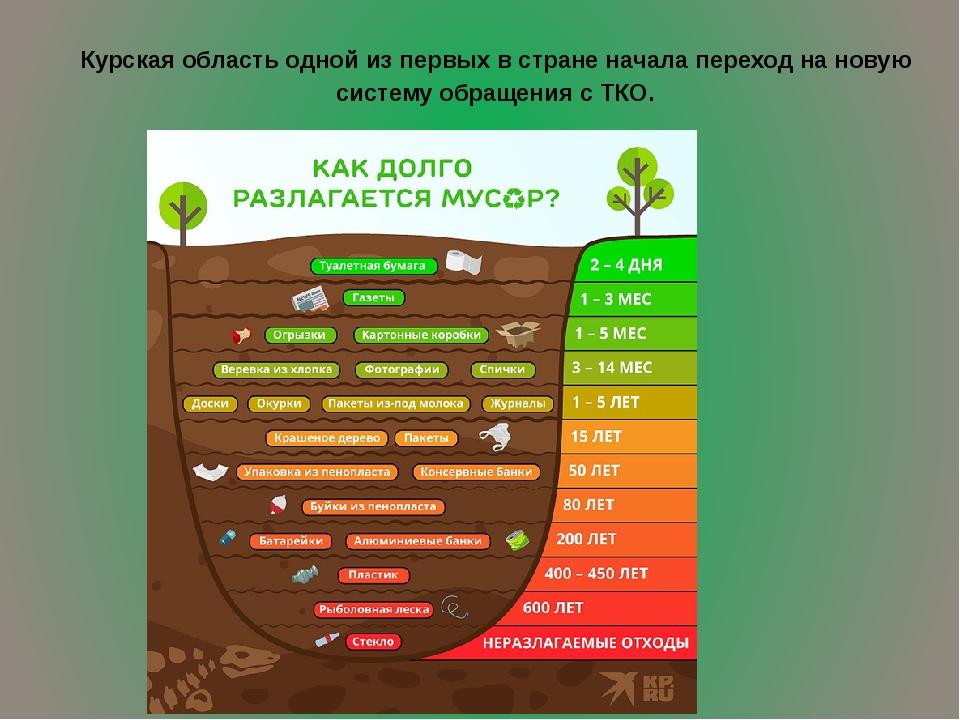Курская область одной из первых в стране начала переход на новую систему обра...