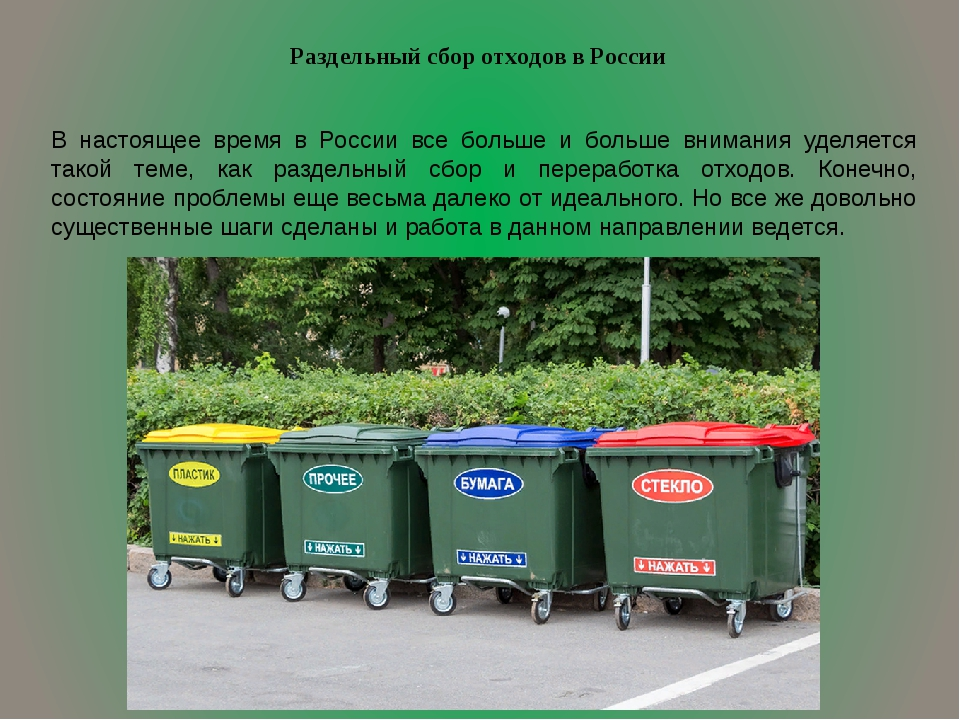Раздельный сбор отходов в России В настоящее время в России все больше и боль...