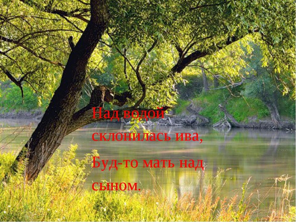 Над водой склонилась ива, Буд-то мать над сыном.