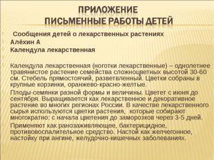 Сообщения детей о лекарственных растениях Алёхин А Календула лекарственная