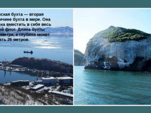 Авачинская бухта— вторая повеличине бухта вмире. Она способна вместить в