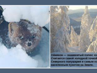 Оймякон— знаменитый полюс холода. Считается самой холодной точкой Северного