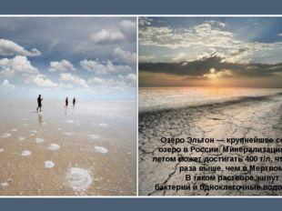 Озеро Эльтон— крупнейшее соленое озеро вРоссии. Минерализация воды летом м