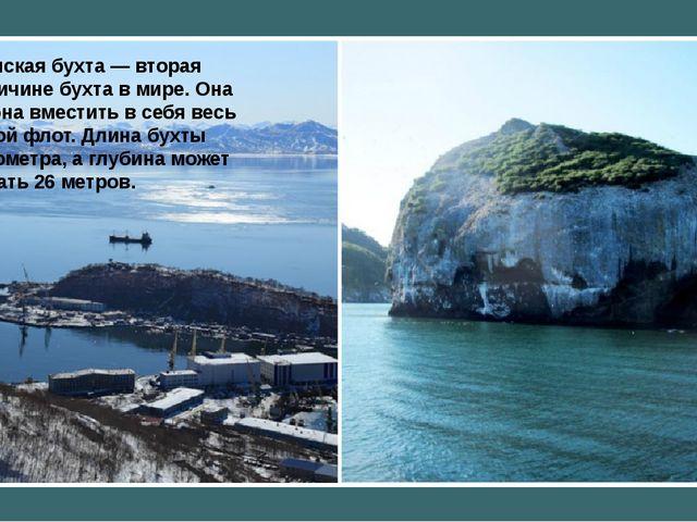 Авачинская бухта— вторая повеличине бухта вмире. Она способна вместить в...