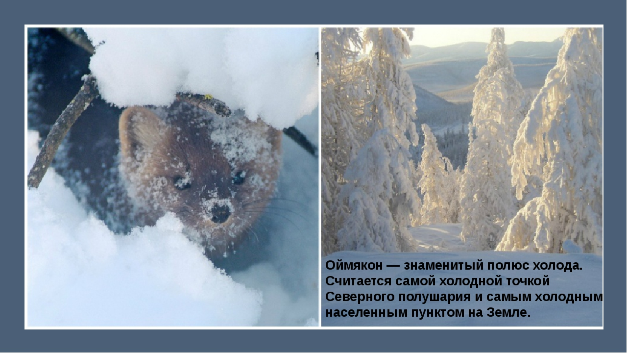 Оймякон— знаменитый полюс холода. Считается самой холодной точкой Северного...