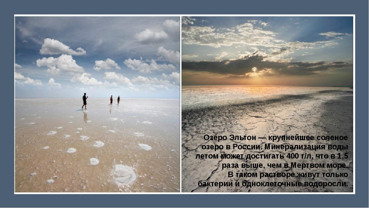 Озеро Эльтон— крупнейшее соленое озеро вРоссии. Минерализация воды летом м...