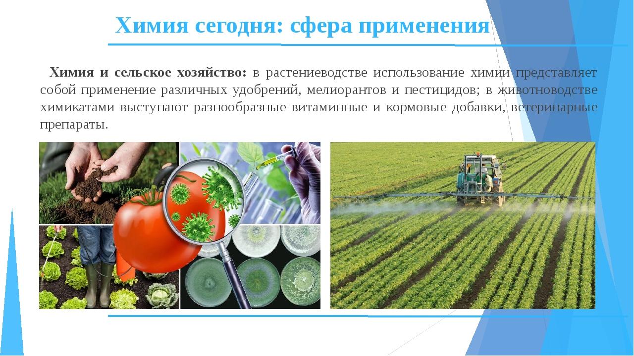 Химия сегодня: сфера применения Химия и сельское хозяйство: в растениеводстве...