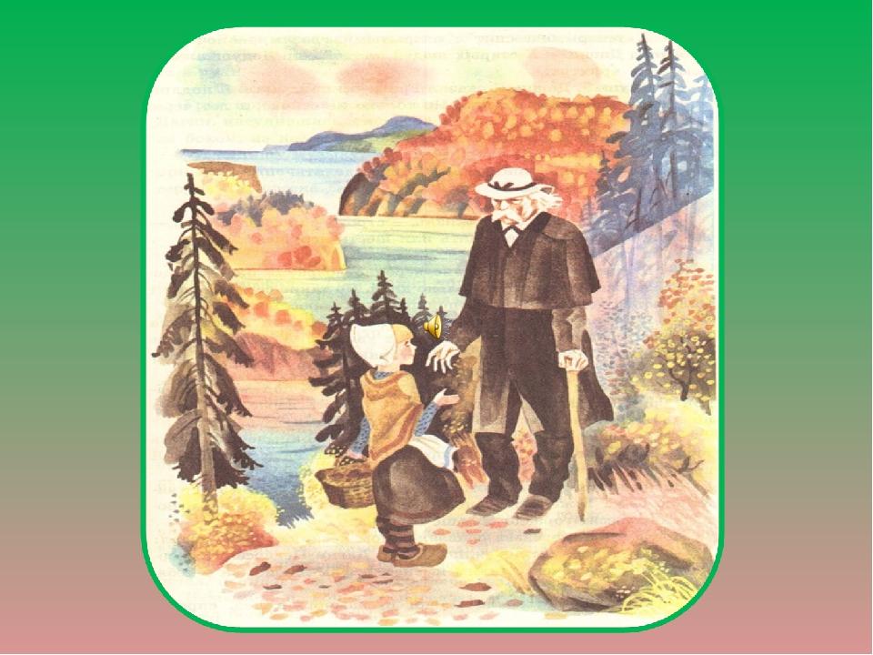Картинки корзина с еловыми шишками