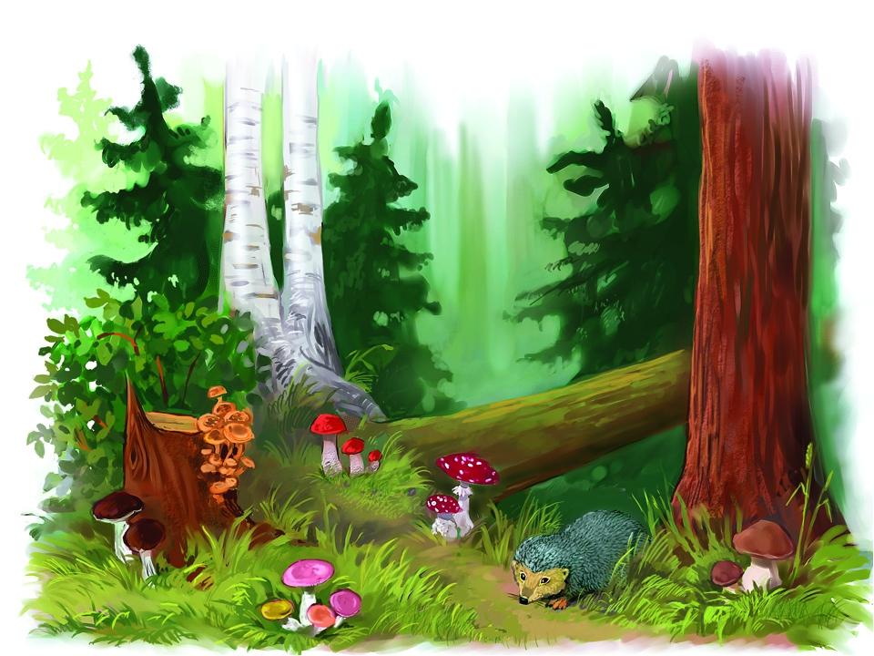 Картинки лес для детей на прозрачном фоне