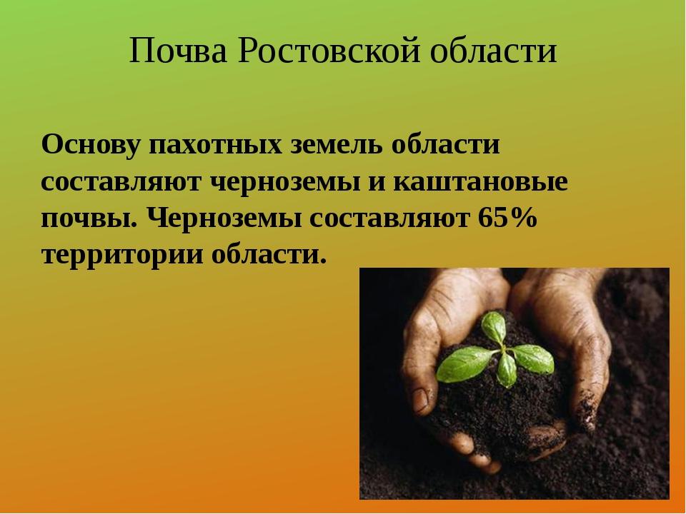 Почва Ростовской области Основу пахотных земель области составляют черноземы...