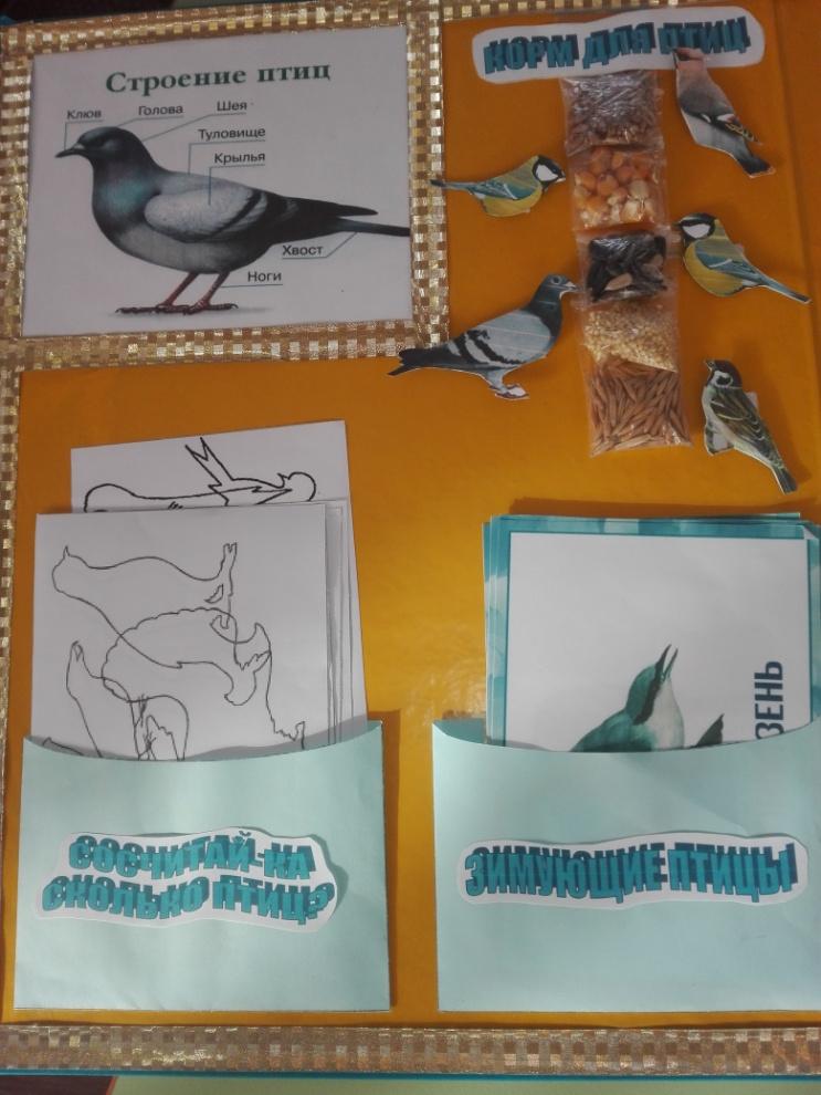 нужно лэпбук зимующие птицы картинки с названиями поможет определить