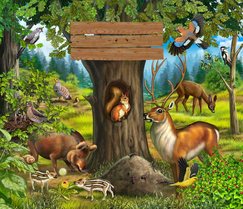 Лес наш дом картинки