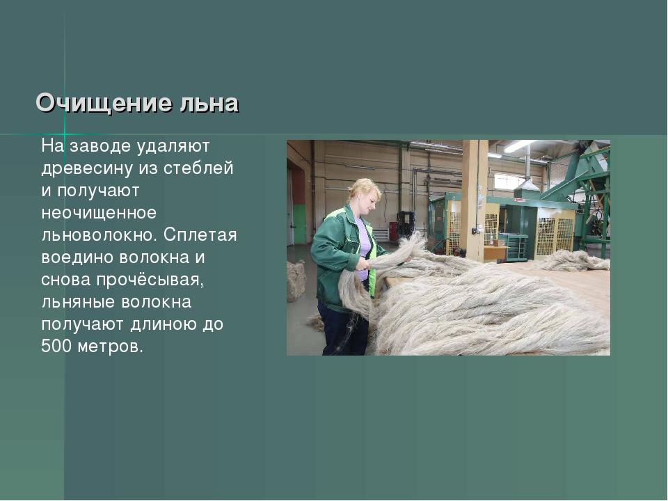 Очищение льна На заводе удаляют древесину из стеблей и получают неочищенное л...