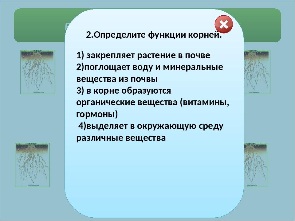 Выберите правильные ответы. 4.Определите по рисунку корнеплоды: 1 2  3...