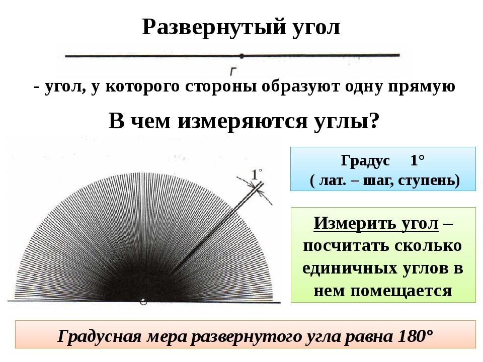 Развернутый угол - угол, у которого стороны образуют одну прямую В чем измеря...