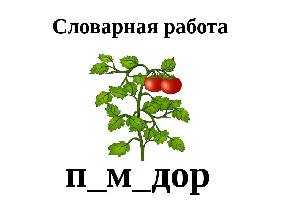 Словарная работа п_м_дор Спелый помидор