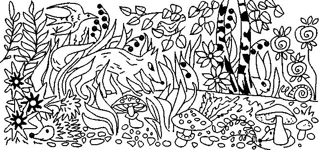 найдите животного на картинке многочисленных