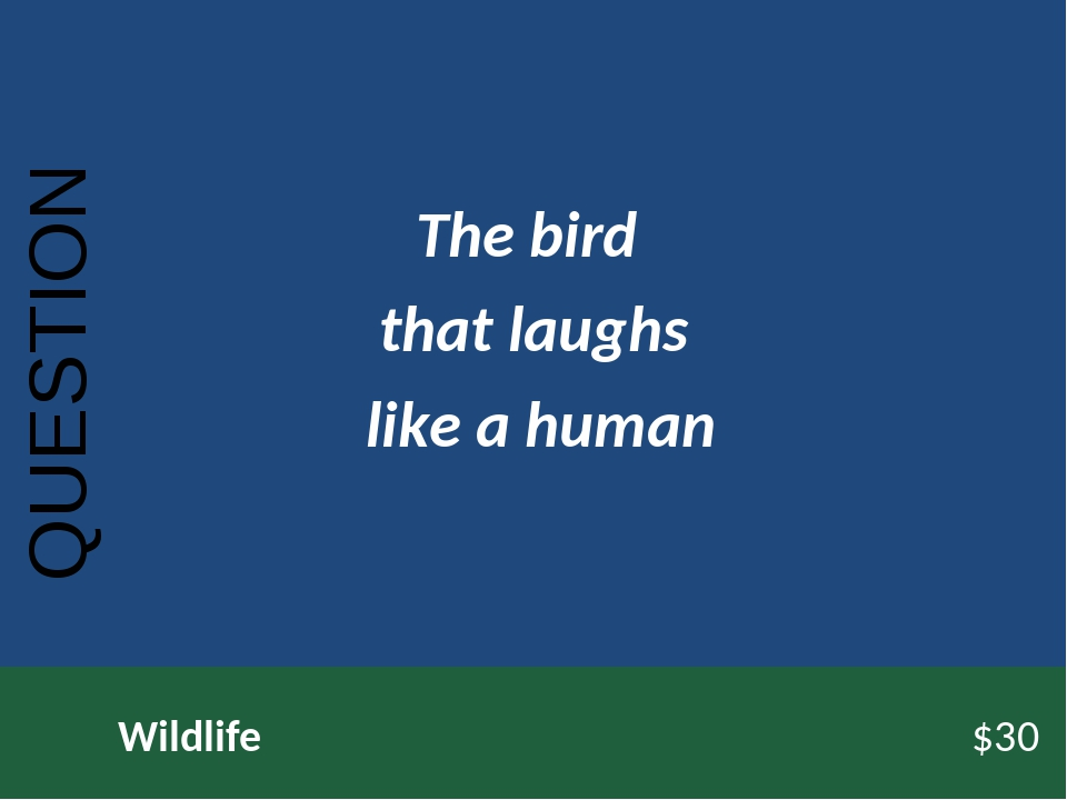 QUESTION Wildlife$30 The bird that laughs like a human