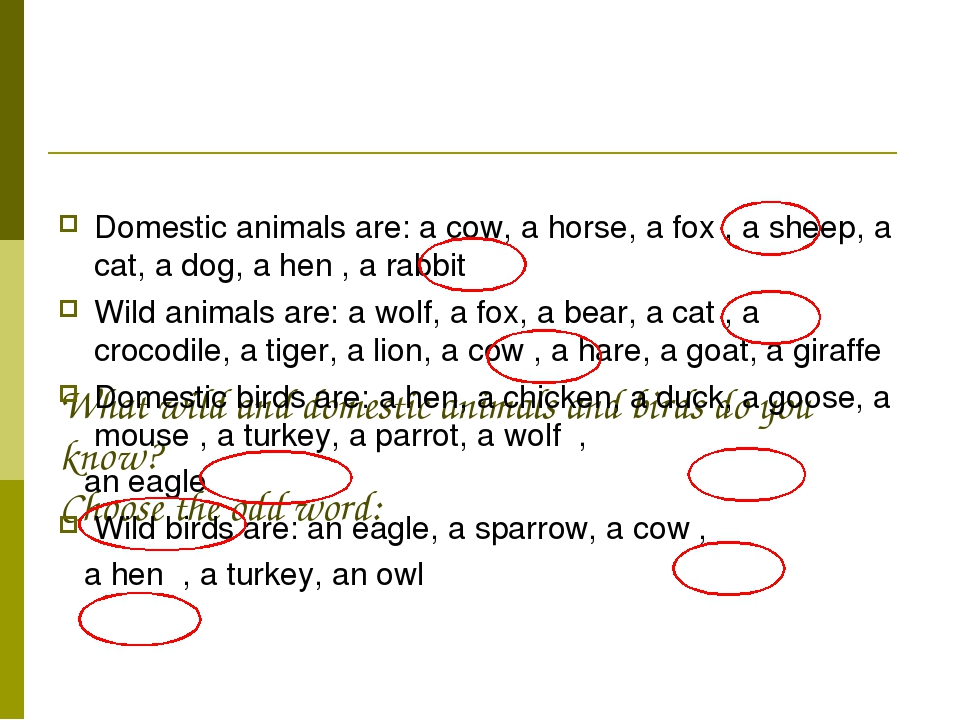 What wild and domestic animals and birds do you know? Choose the odd word: D...