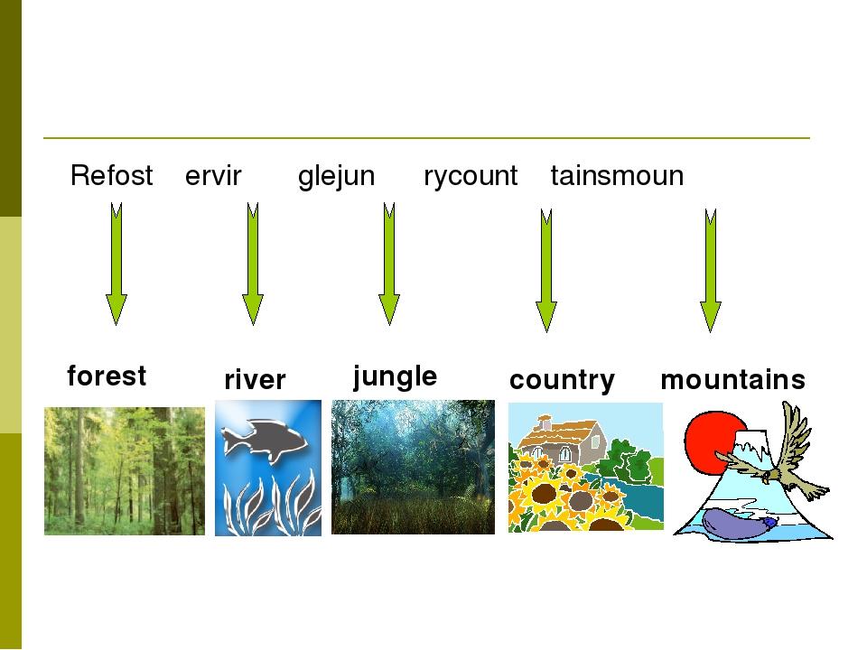 Refost ervir glejun rycount tainsmoun forest river jungle country mountains