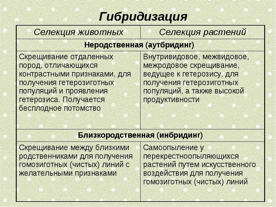 Гибридизация Селекция животныхСелекция растений Неродственная (аутбридинг)...