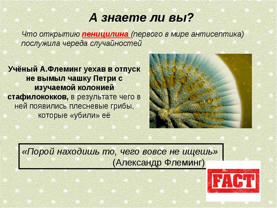 А знаете ли вы? Что открытию пеницилина (первого в мире антисептика) послужил...