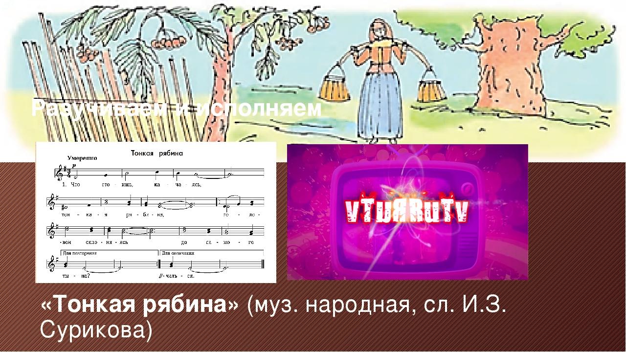 «Тонкая рябина» (муз. народная, сл. И.З. Сурикова) Разучиваем и исполняем