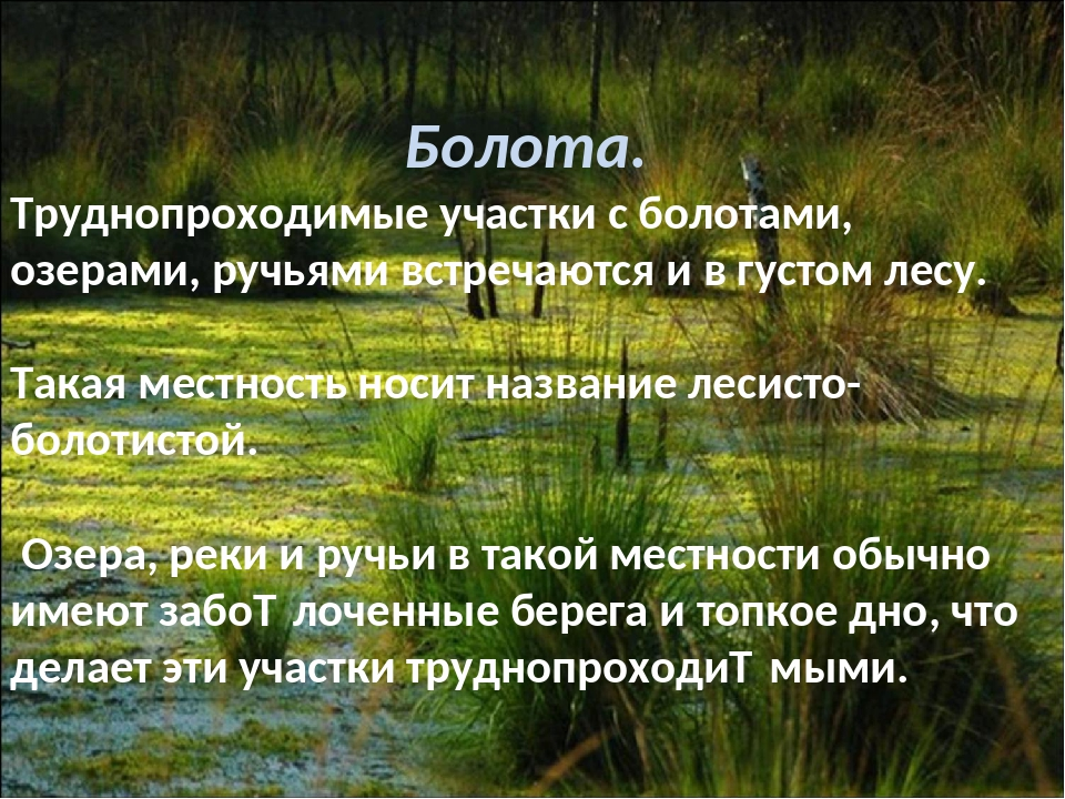 Болота. Труднопроходимые участки с болотами, озерами, ручьями встречаются и в...