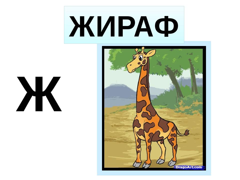 Ж ЖИРАФ