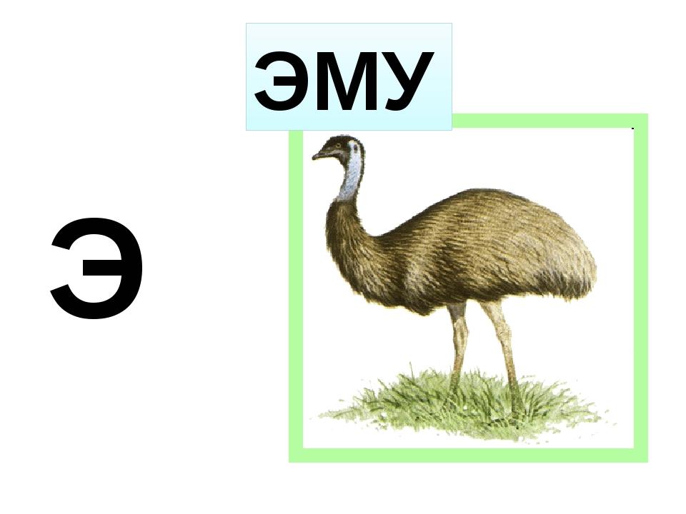 Э ЭМУ