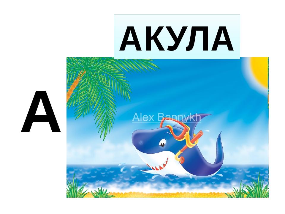 А АКУЛА