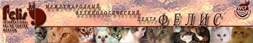 hello_html_m2e897ccb.jpg