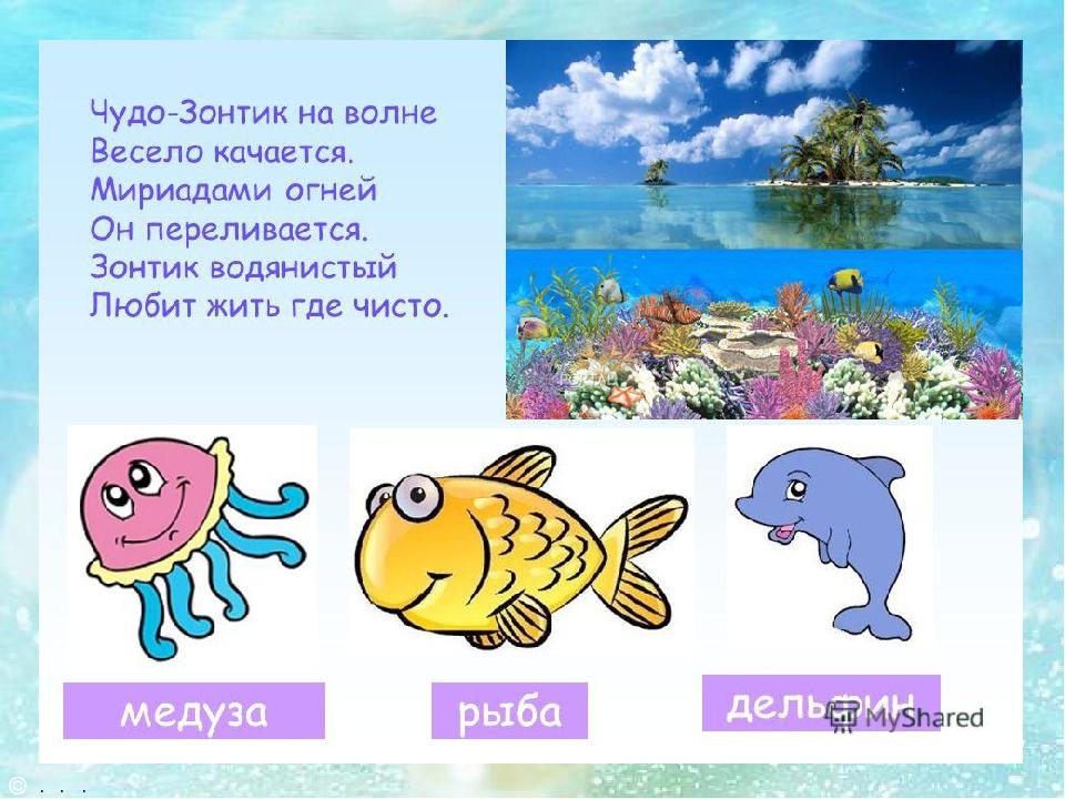 загадки о рыбах в картинках известен