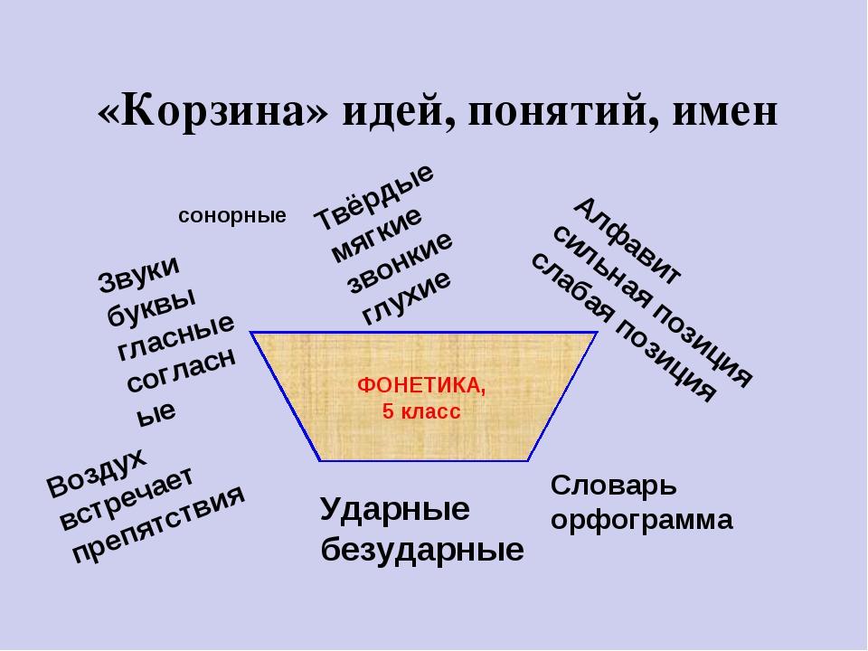 «Корзина» идей, понятий, имен Звуки буквы гласные согласные Твёрдые мягкие зв...