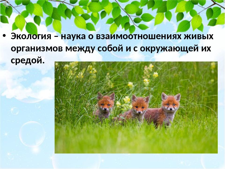 Экология – наука о взаимоотношениях живых организмов между собой и с окружающ...