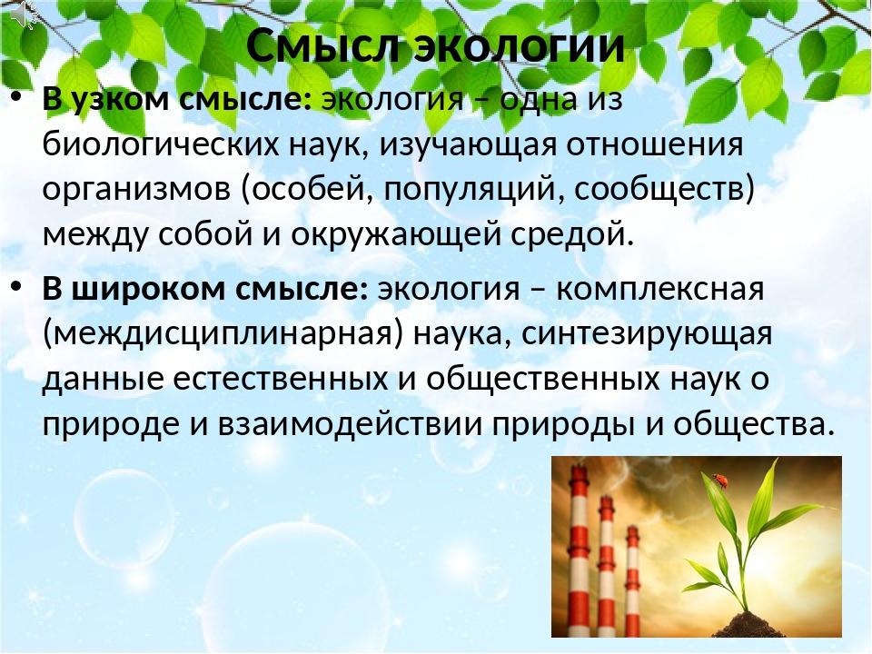 Смысл экологии В узком смысле: экология – одна из биологических наук, изучающ...
