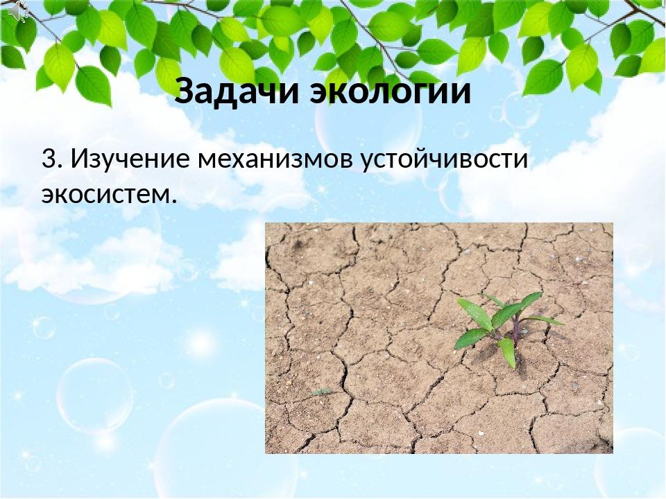3. Изучение механизмов устойчивости экосистем. Задачи экологии