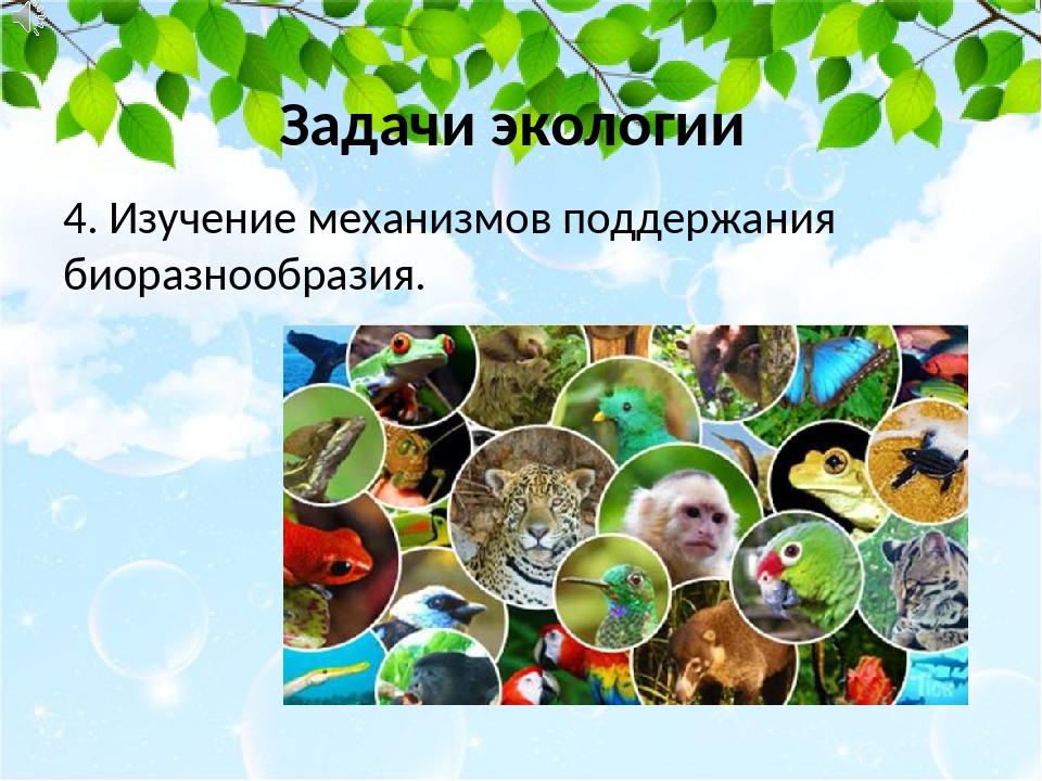 4. Изучение механизмов поддержания биоразнообразия. Задачи экологии